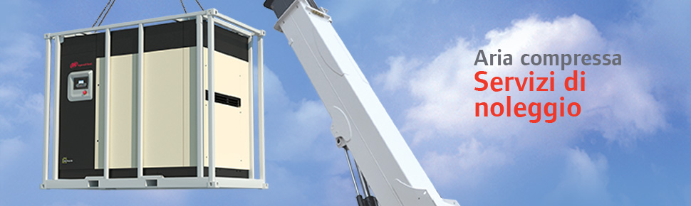 Rental_services_Crane_banner_IT